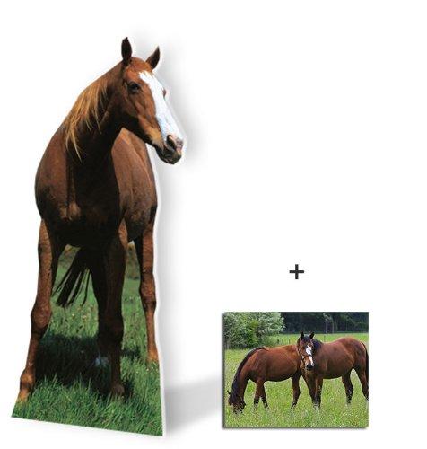 Mustang Cardboard Cutout