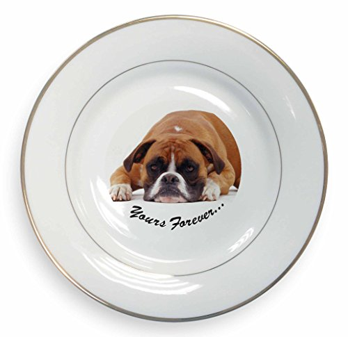 ~  Boxer ~ Fine Bone China Plate