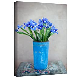 Art Wall Iris Flowers Gallery-Wrapped Canvas Art by Elena Ray, 18 by 12-Inch by The Art Wall