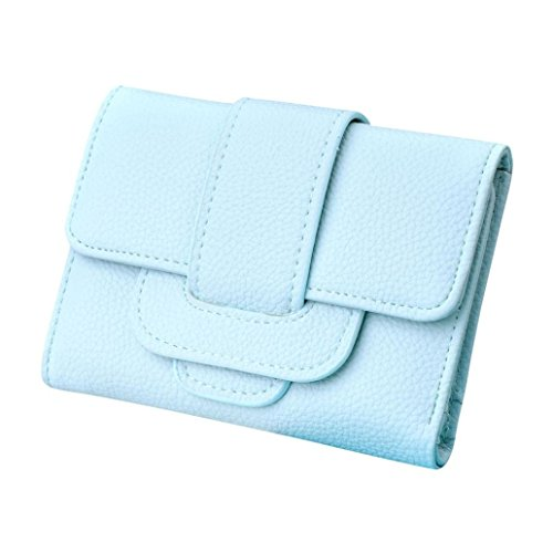 lhwy-patron-de-lichee-hasp-mujeres-titulares-de-la-tarjeta-monedero-corta-cartera-bolso-verde