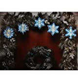 Holiday Time Blue White Shimmering Snowflake Christmas Light Garland with 10 Clear Mini Lights and White Wire - 7'