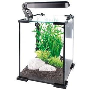 nano aquarium satz yamato 20l 25cm haustier. Black Bedroom Furniture Sets. Home Design Ideas
