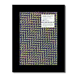 ANIMAL COLLECTIVE - Merriweather Post Pavilion Matted Mini Poster - 28.5x21cm
