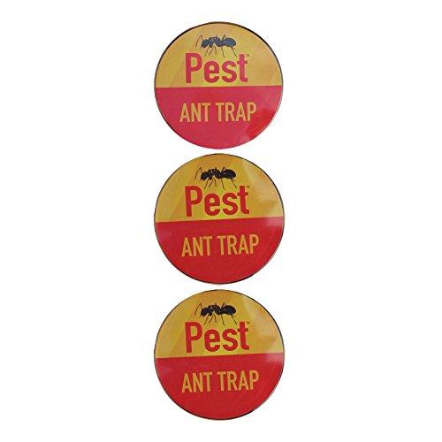 we-search-you-save-piege-a-fourmis-pre-avec-appat-anti-insectes-sans-poison-roaches-colle-pour-inter
