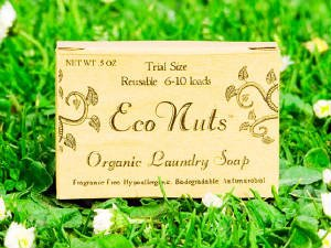 Eco Nuts Organic Laundry Soap Trial Size