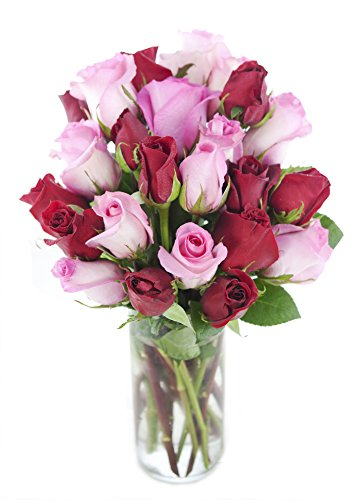 Bouquet Of Long Stemmed Red And Pink Roses Two Dozen