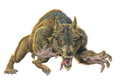 "Mythical Monsters Wall Decals - Werewolf 12"" Removable Wall Graphic"
