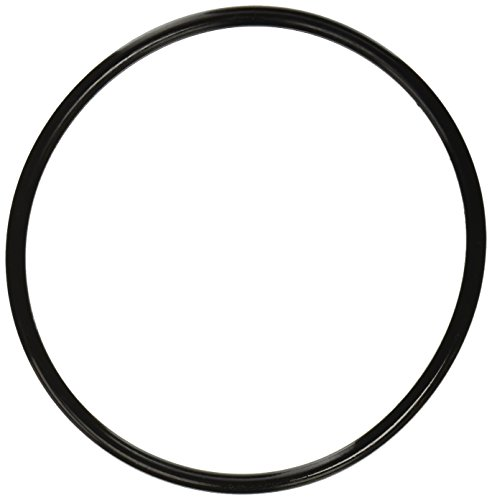 Pentair 350013 Lid O-Ring Replacement Pool and Spa Pump (Pool Pump O Ring compare prices)