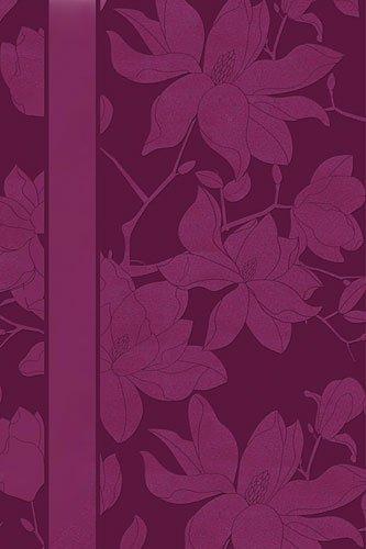 神圣的圣经: 新国际版,女人的研究圣经 》,个人的大小