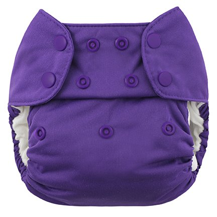 Blueberry One Size Simplex All In One Diaper w/ Organic Cotton, Grape