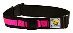 Squishy Face Studio Hands Free Dog Leash Belt, Medium/Large, Neon Pink