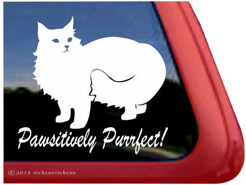 Pawsitively Purrfect! ~ Cat Kitty Vinyl Window Decal Sticker front-535944