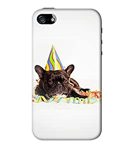 Go Yankee black pug back case cover for iphone 5/5s