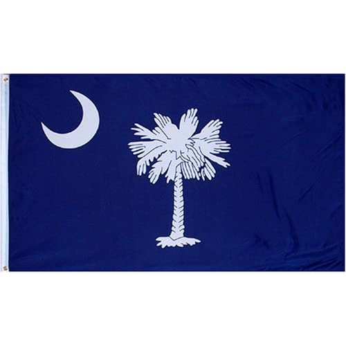 Amazon.com : South Carolina BLUE State Flag 3x5 3' x 5' Brand NEW US