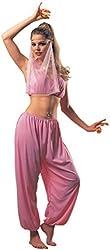 Adult Arabian Dancer Costume, Ladies Standard (Up to Dress size 12)