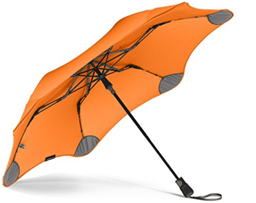 Pricey But Perfect: The Best Umbrella Money Can Buy