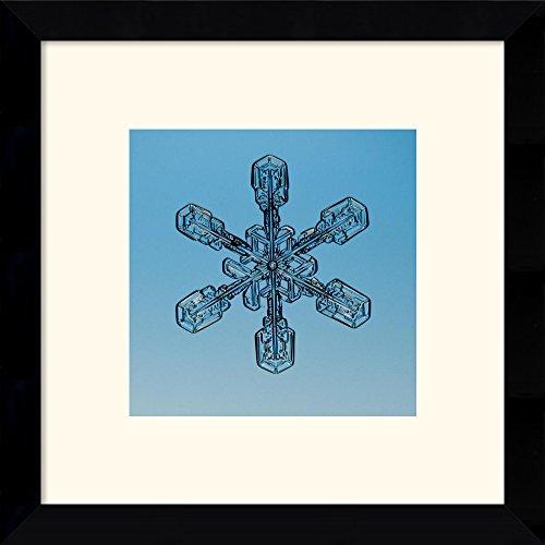 Snowflake Seen Through Microscope By Steve Gettle Framed
