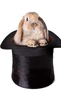 MindBlowing Bunny In Magic Trick Hat Journal: 150 page lined journal