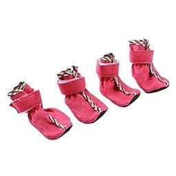 Tint Zipper Soft Sole Dog Shoes