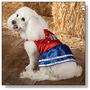 Cheerleader Dress up Halloween Costume Outfit for Dog- MEDIUM