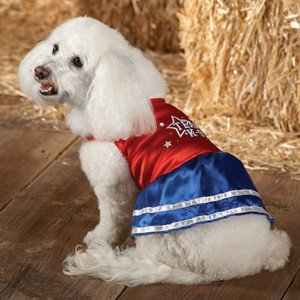 Fourth of july dog clothes