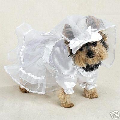 Wedding Costumes on Bride Dog Wedding Dress Costume Xs