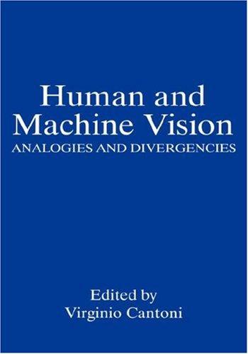 Human and Machine Vision: Analogies and Divergencies