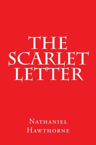 scarlet letter custom house summary