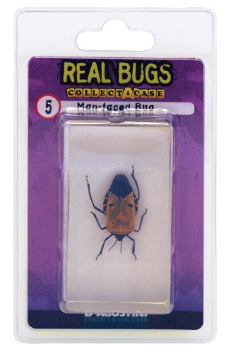DeAgostini Real Bugs Man Faced Bug - 1
