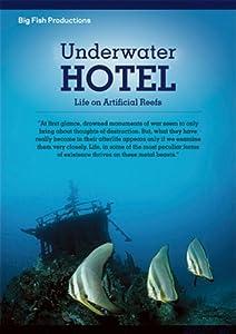 Underwater Hotel: Life On Artificial Reefs
