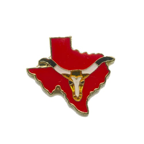 Texas Bundesstaat Houston Dallas USA Badge Metall Button Pin Pins Anstecker 388