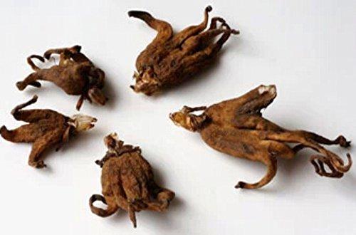 Helen Ou@Tibet Specialty: Wild Palm Ginseng Or Bergamot Ginseng Or Foshousen Or Shouzhangsen front-30252