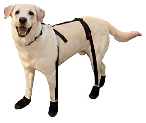 Amazon Com Canine Footwear Suspenders Snuggy Boots For