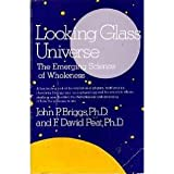 Looking Glass Universe