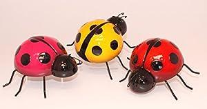 Ladybird Medium by Fountasia