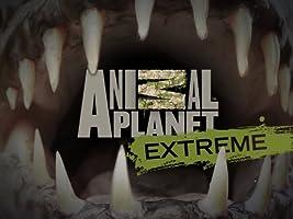 Animal Planet Extreme Season 2