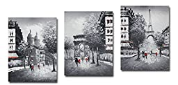 Muzagroo Art Stretched Eiffel Tower Oil Painting on Canvas 3 Panels (Black White)