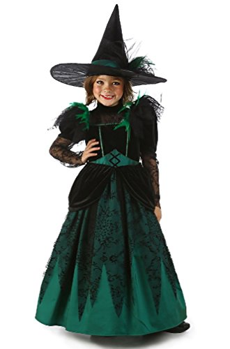 8eighteen Wicked Witch of the West Child Costume (Wicked Witch Of The West Socks)