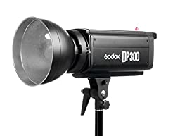 Godox DP-300 300WS Pro Photography Strobe Flash Studio Light Lamp Head 110V DP300
