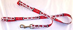 Cincinnati Reds 6' Long MLB Dog Leash