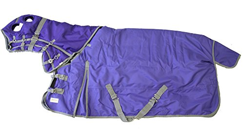 "1200D Heavy Weight Waterproof Horse Blanket And Hood Combo Purple, 70"" S back-638600"