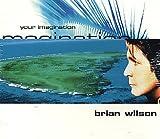 Brian Wilson Your Imagination