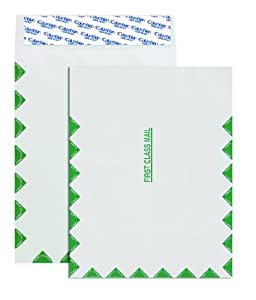 Columbian CO810 9-1/2x12-1/2-Inch Tyvek First Class Mail White Envelopes, 100 Count