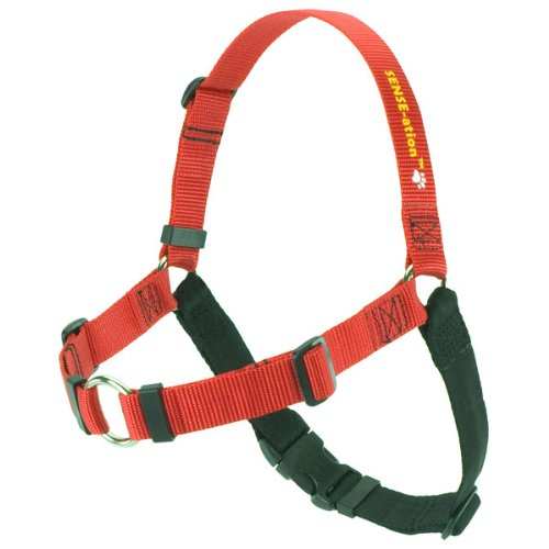 SENSE-ation No-Pull Dog Harness (Red, Extra Small) (Wonder Walker Harness compare prices)