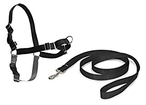 PetSafe Easy Walk Harness, Small, Black