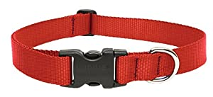 Lupine 1-Inch Red 12-20-Inch Adjustable Dog Collar for Medium and Large Dogs