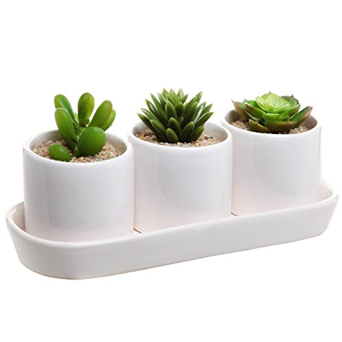 White Ceramic Contemporary Design Succulent Plant Holder Display Set w/ 3 Pots & 1 Water Draining Tray