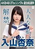 【入山杏奈】ラブラドール・レトリバー AKB48 37thシングル選抜総選挙 劇場盤限定ポスター風生写真 AKB48チームA
