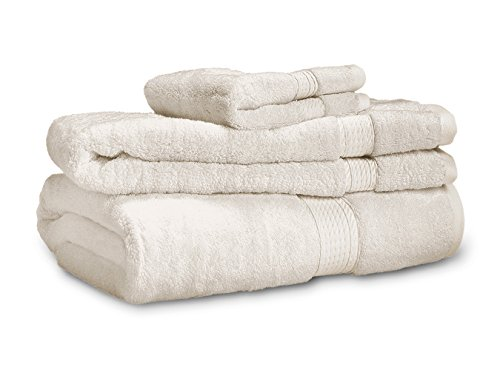 900 Gram 3-Piece Egyptian Cotton Towel Set - Heavy Weight & Absorbent by ExceptionalSheets, Stone (Turkish Bath Sheet 900 Gsm compare prices)