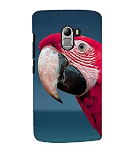 Fuson Premium Cute Macaw Printed Hard Plastic Back Case Cover for Lava Pixel V1